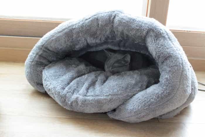 Gato gris acurrucado en una cama cueva de forro polar