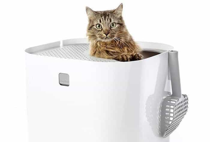 Arenero Modkat para gatos.