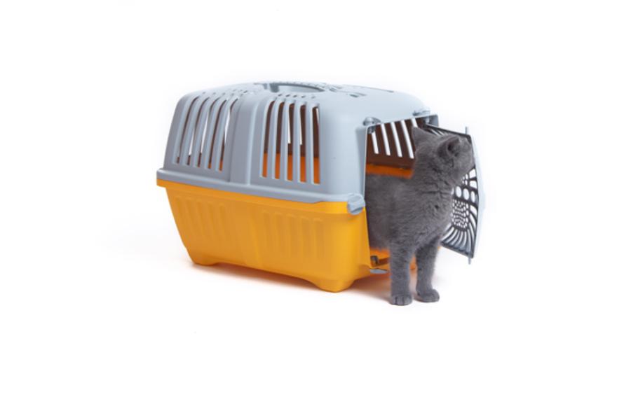 Transportín rígido para gatos