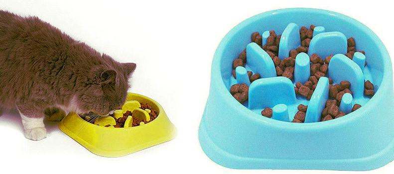 Gato comiendo despacio en un comedero antivoracidad