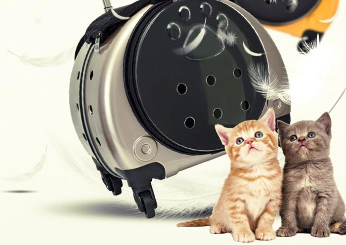 Bolsa dura de transporte para gatos con ruedas