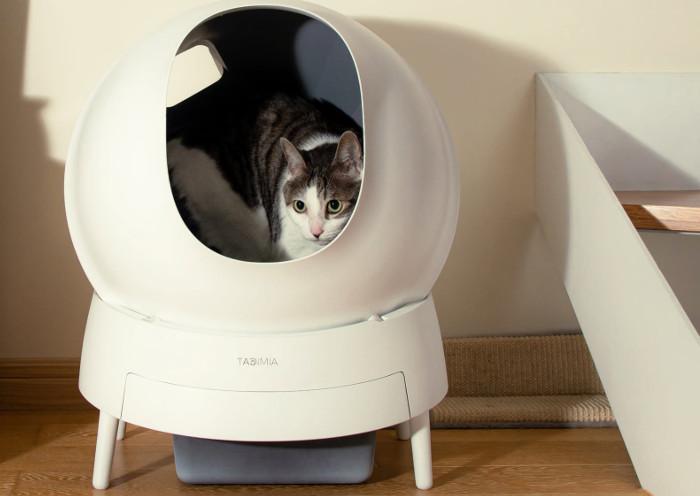 Gato dentro de un arenero automático en el salón de casa