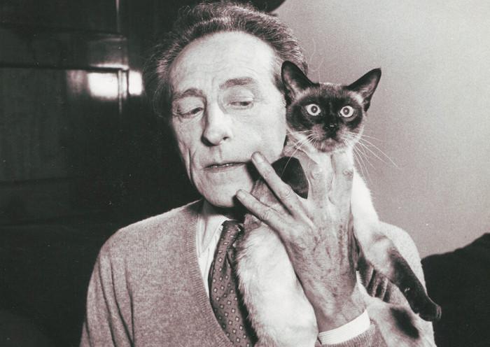 Jean Cocteau con su gato y que le dedicó una frase divertida