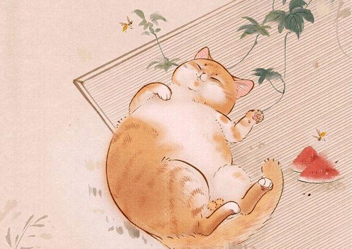 Gato con nombre japonés pintado